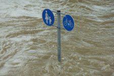 Inondation / Hermann Traub