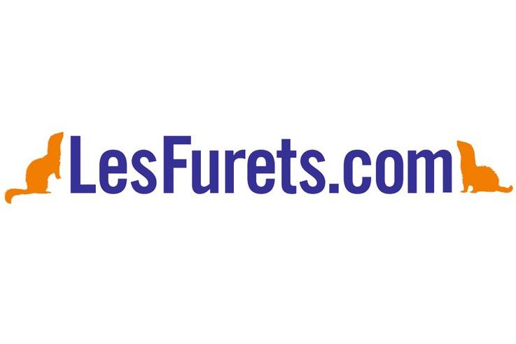 Assurance Habitation Lesfurets Com Avis Et Analyse Index